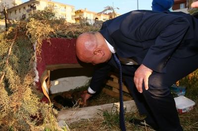 Başkan Altınok minik köpek yavrularına sahip çıktı
