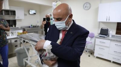 Keçiören Belediyesi '8 bin 376' sokak canlısını tedavi etti