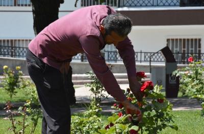 Çiçek budamanın inceliklerini uygulamalı öğrendiler