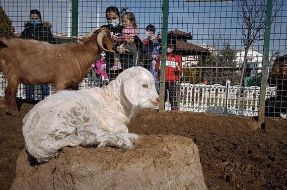 Çocuklar Doğal Yaşam Parkı`na akın etti