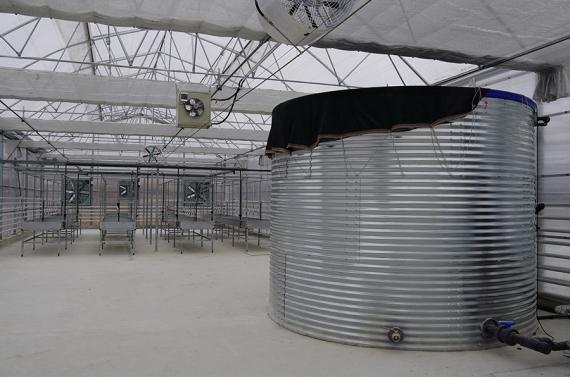 Keçiören'deki modern seraya akıllı iklimlendirme sistemi