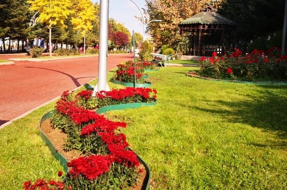 Keçiören'in parkları kasımpatılarla donatıldı
